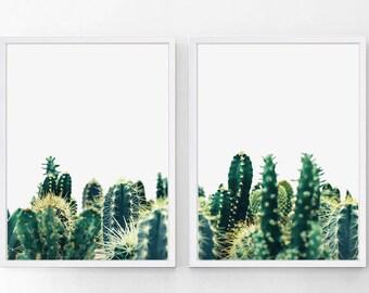 Cactus Print, Cactus Poster, Cactus Wall Art, Cactus Photo, Cactus Art, Printable Cactus, Cactus Decor,  Set of 2 Prints, Digital Download