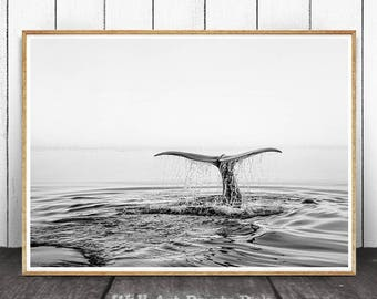 Ocean Print, Whale Tail Print, Ocean Wall Art, Coastal Wall Decor, Black And White, Beach Print, Beach Wall Art, Modern Minimalist, Whale