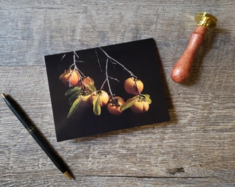 Persimmons - Note card. Stationery. Letter. Holiday. Post. Writing. Greeting. Fruit. Photography.
