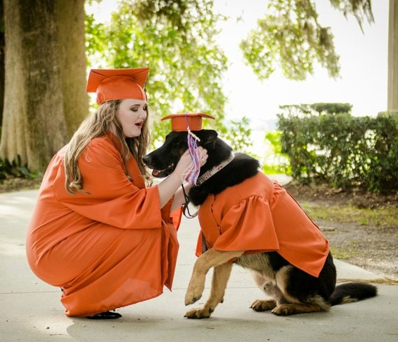 Dog Doctoral Graduation Cap and Gown