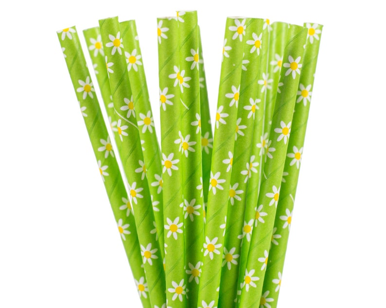 Paper Straws Lime Green with White Daisy Paper Straws Garden image 0