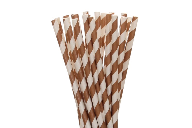 Paper Straws Brown Striped Paper Straws 1st Birthday Straw image 0