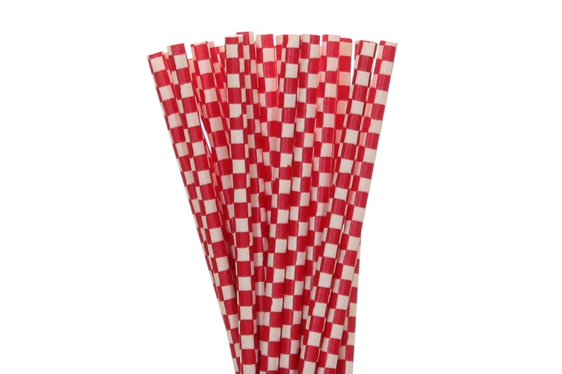 Paper Straws Red Checkered Paper Straws BBQ Paper Goods image 0