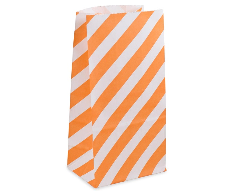 Party Favor Bags Orange Striped Paper Lunch Bags Set of 10 image 0