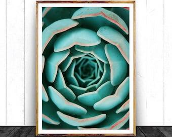 Succulent Print - Printable Art, Cactus Wall Art, Digital Download, Aloe Print, Botanical Printable, Modern Poster, Greenery Art, Mint Green