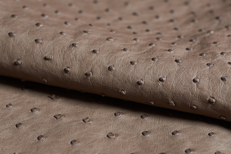OSTRICH LEATHER taupe  fianoleather