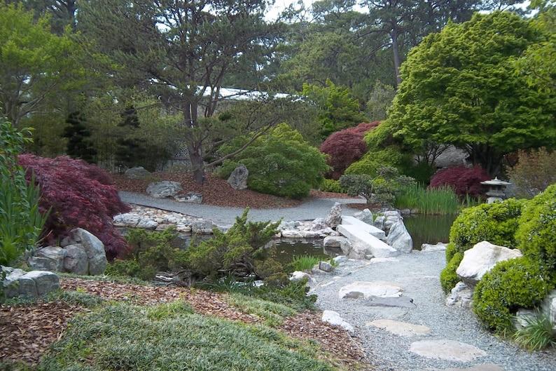 De jardin Zen jardin japonais imprimer photo allée Pierre | Etsy
