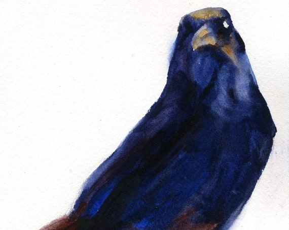 a signed print of a crow or raven by watercolor artist Bonnie White Crow 24