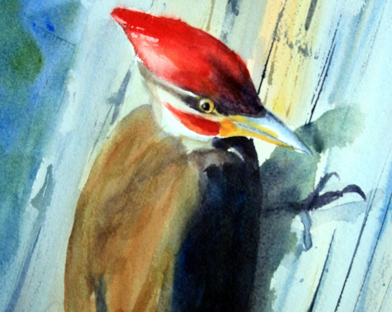 pileated woodpecker signed print from a watercolor by Bonnie White