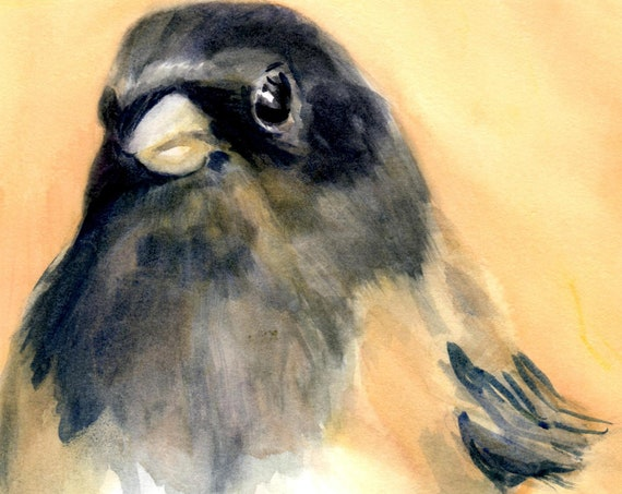 Junco 2 signed print of a songbird by Bonnie White watercolor artist