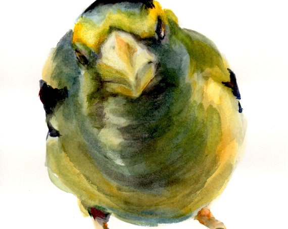 Evening Grosbeak signed print of a watercolor by Bonnie White watercolor artist
