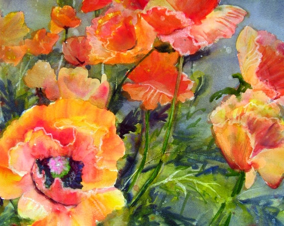 Poppies 24 - a signed poppy print from an original watercolor by Bonnie White