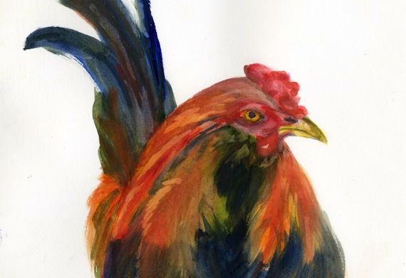 Steward - signed rooster print by Bonnie White watercolor