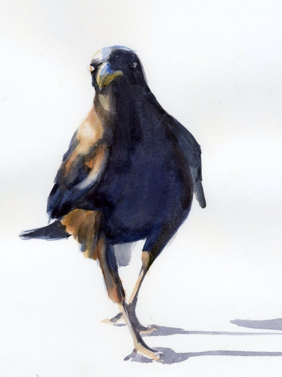 Confident Crow -- signed raven watercolor print - Bonnie White - crow print