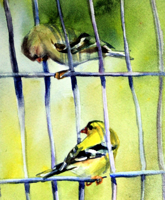 American Goldfinch signed print of a watercolor by Bonnie White
