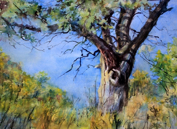 Oak tree of the Columbia Gorge a signed print from an original watercolor by Bonnie White Oregon White Oak