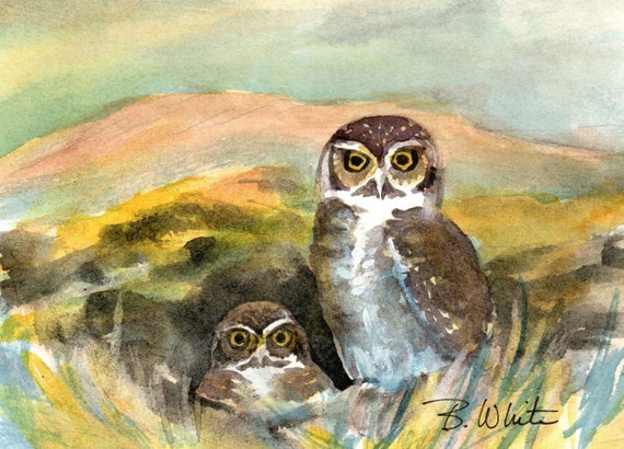 Burrowing owl original watercolor painting by Bonnie White 5x7 matted to 8x10