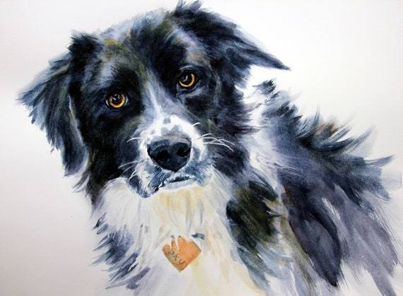 Sky - signed border collie print