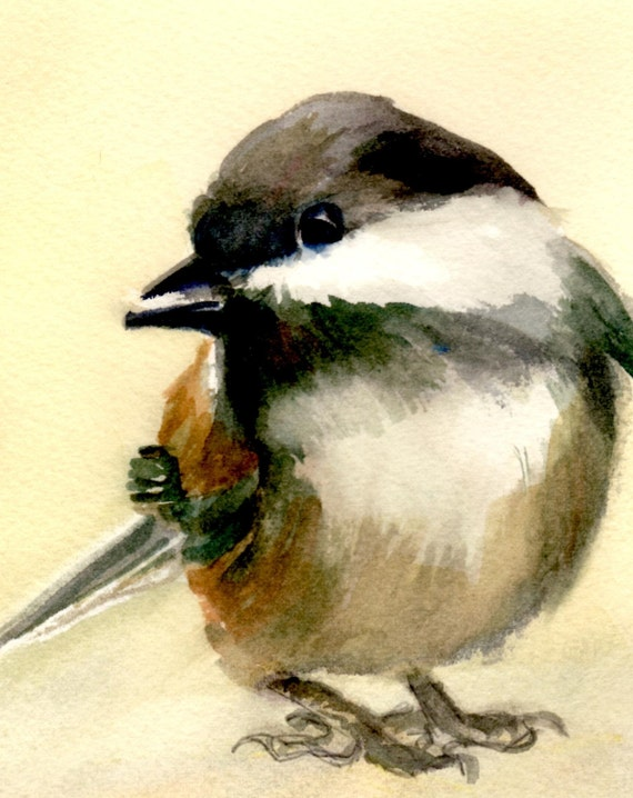 Chickadee print - signed song bird black--capped chickadee print - watercolor - Bonnie White