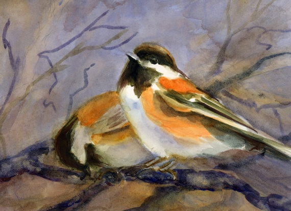 Chestnut-backed Chickadee -- a signed print done made from a watercolor by Bonnie White
