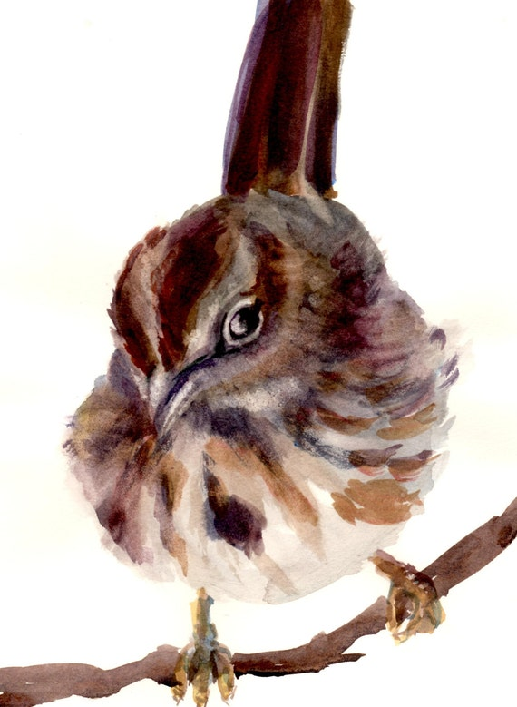 song bird print of a Song Sparrow -- a signed print of a watercolor painting done by Columbia Gorge artist Bonnie White