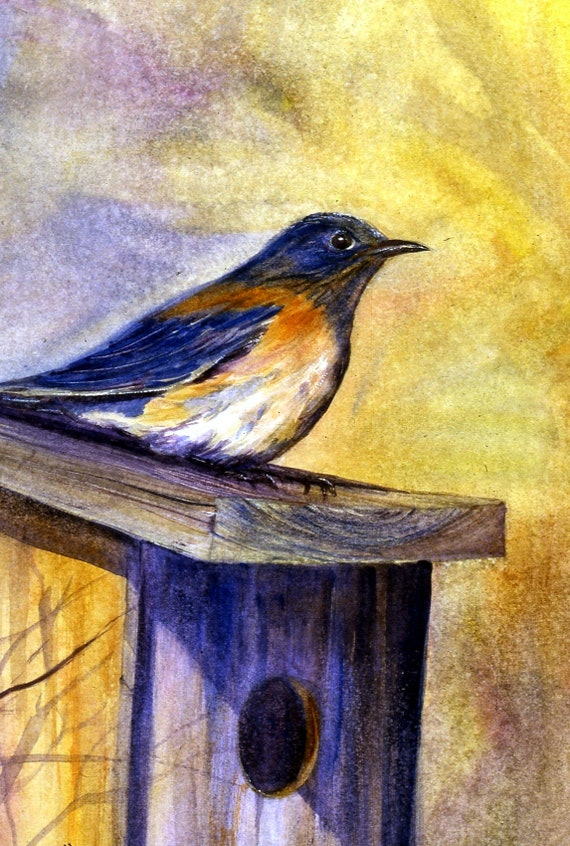 Bluebird signed print of a watercolor by Bonnie White watercolor artist
