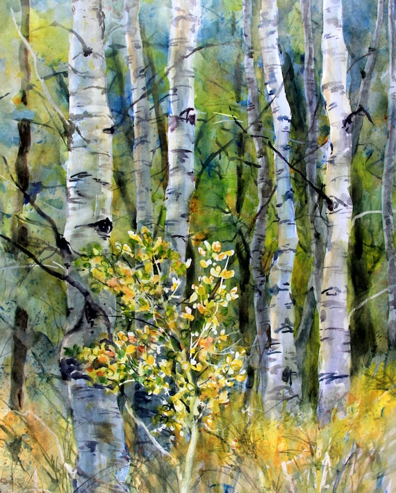 Aspen Grove 13 - signed print - watercolor painting - Bonnie White - Columbia Gorge