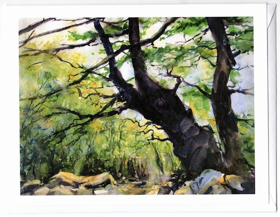 Trees at the top of Wind Mountain blank note cards 4.25x5.5 with envelopes in clear envelope in packs of 5 or 10