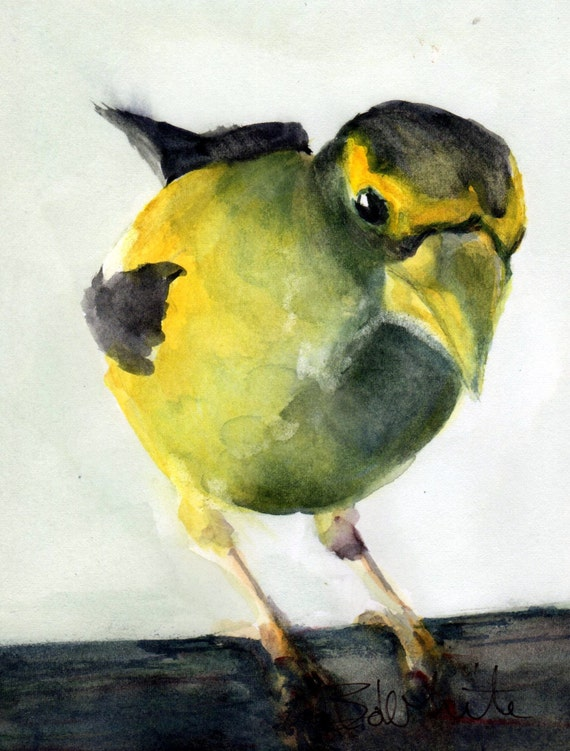 Evening Grosbeak original #13 - bird watercolor - Bonnie White - songbird - art - watercolor painting - avian painting