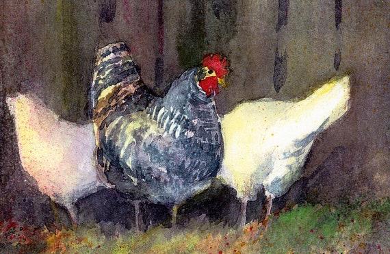 chicken print of bard rock and leghorn chickens called Chicken Gossip, signed print