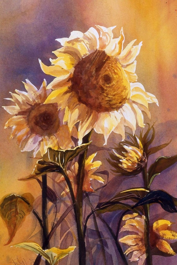 Sunflower signed print from a watercolor painting by Bonnie White