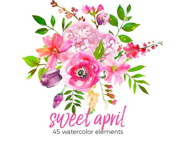 Rosa Blumen Pfingstrosen Clipart Set Hochzeit Blumen Clip Art Digital Florals Diy Einladung Kindergarten Printables Hortensienbluten Png