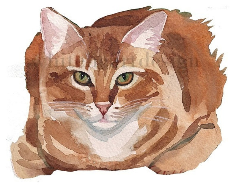 280eb7f2499 Red Ginger Tabby Cat Clipart Hand Painted Watercolor Digital