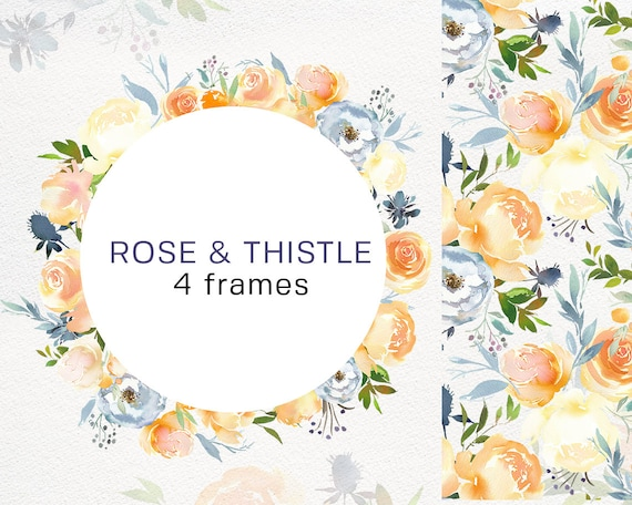 Peach Pink Rose & Blue Thistle Watercolor Floral Frames PNG | Etsy