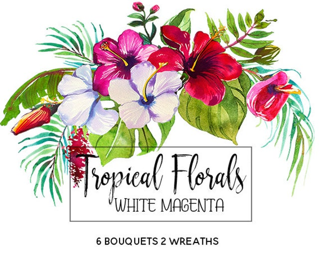 Tropical Flowers Watercolor Clipart Tropics Australian Florals | Etsy