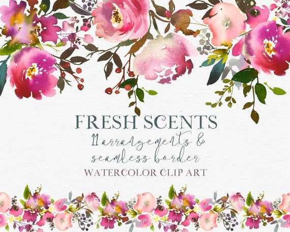 Rosa Pfirsich Blumen Pfingstrosen Rosen Aquarell Clipart Etsy