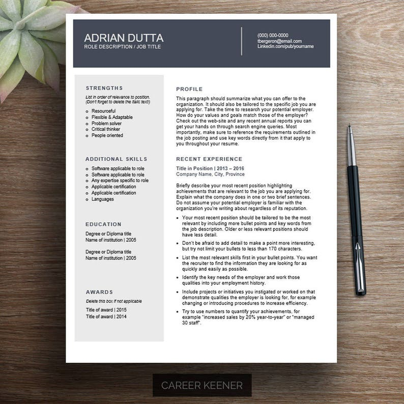 Professional Resume Template 2 Page Chronological