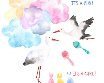 Watercolor Baby Delivery Storks Digital