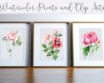 Watercolor Peonies Prints & Clip Arts