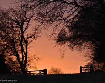 Dawn walk, countryside, sunrise, nature, original photographic print