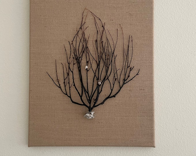 """16""""x20"""" Burlap Canvas with Real Sea Fan"""