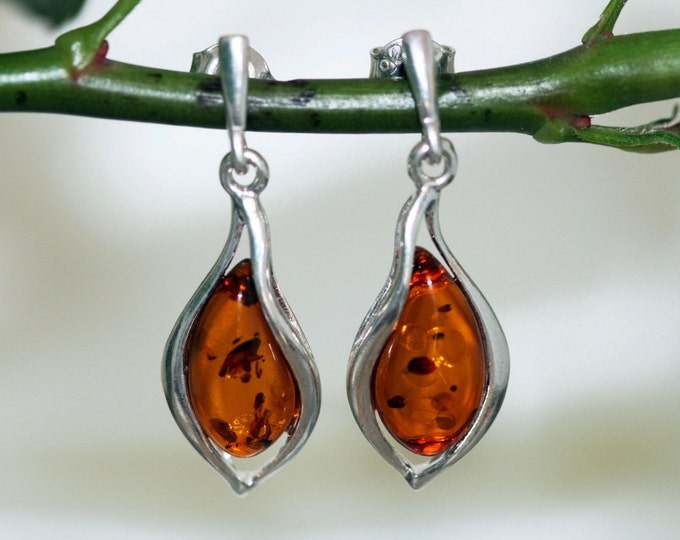 Big Baltic amber earrings. Sterling silver and cognac amber earrings.