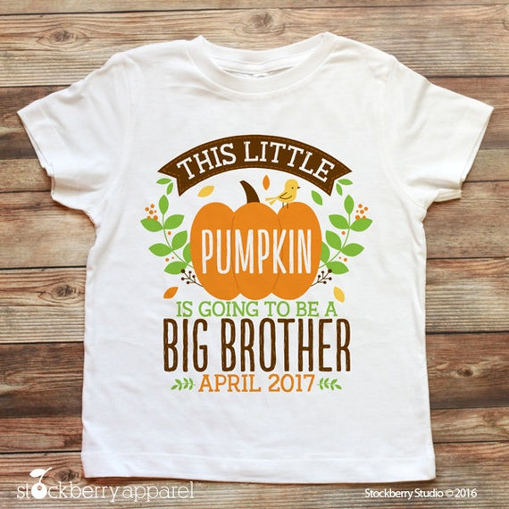 Fall Pregnancy Announcement Shirt Fall Big Brother Shirt Fall