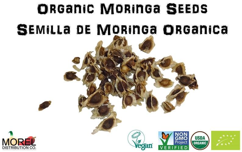 Organic Moringa Oleifera Seeds (Semillas de Moringa) / WT: 1 oz, 3 oz, 5  oz, 8 oz, 10 oz, and 12 oz