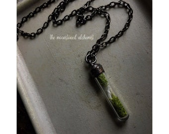 Weasel Chomper Choker - short tailed weasel tooth with iridescent bubbles - immortalized in luscious copper