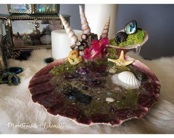 LG Clam Shell Tide Pool Jewelry Display Dish - Realistic Underwater world with Octopus Sculpture - Crystal and Shell Ring Dish