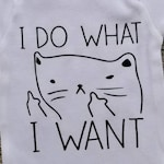 I Do What I Want Bodysuit Cat Tees Kitty Tees Funny Baby Clothes Newborn Baby Clothes Funny Baby Shirts Custom Bodysuit Baby Shower Gift
