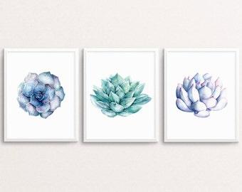 Succulent Prints, Succulent Print Set, Succulent Printable, Succulent Wall Art, Botanical Print, Tropical Wall Art, Succulent Poster