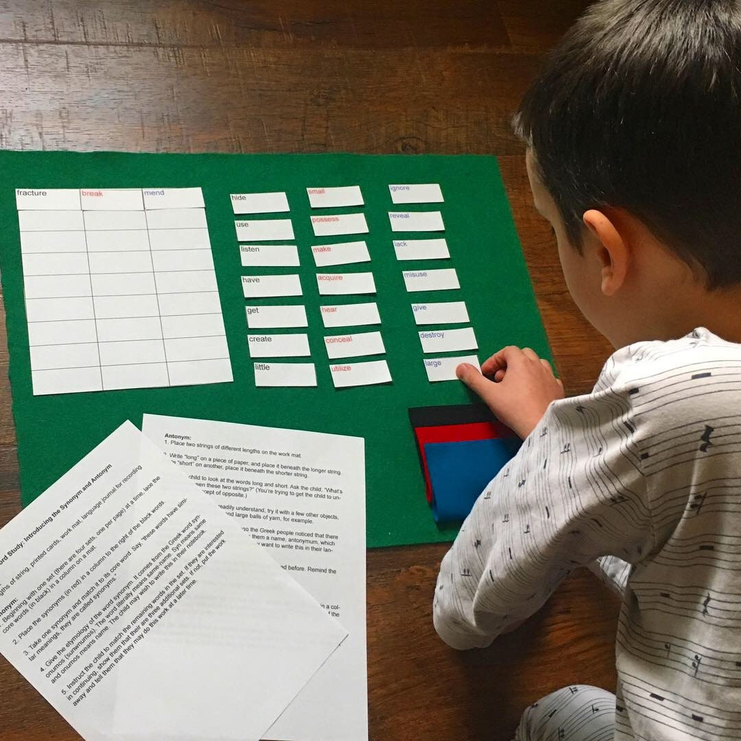 Montessori Language, Montessori Materials, Homeschool activity, Montessori  Language Arts, ESL Material, Hands-on learning, Montessori