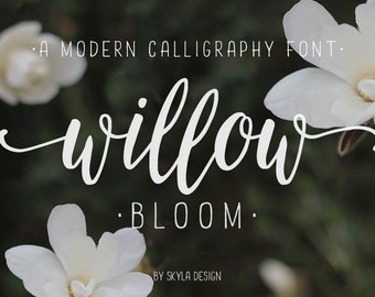 Modern calligraphy font / calligraphy typeface / wedding font download Willow Bloom / hand lettered fonts / calligraphy font watercolor
